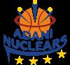 ADANI  Nuclears